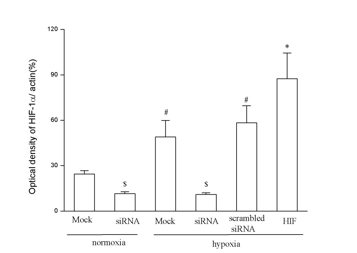 http://static-content.springer.com/image/art%3A10.1186%2F1471-2407-6-26/MediaObjects/12885_2005_Article_378_Fig3_HTML.jpg