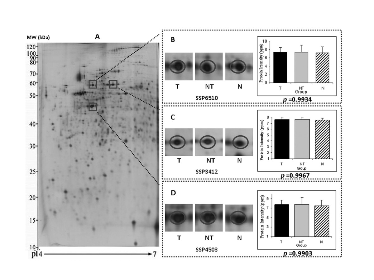 http://static-content.springer.com/image/art%3A10.1186%2F1471-2407-9-309/MediaObjects/12885_2009_Article_1643_Fig1_HTML.jpg
