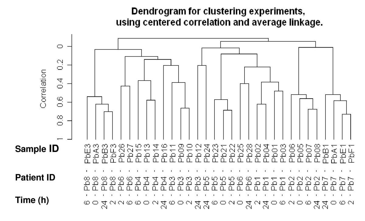 http://static-content.springer.com/image/art%3A10.1186%2F1471-2407-9-409/MediaObjects/12885_2009_Article_1743_Fig2_HTML.jpg