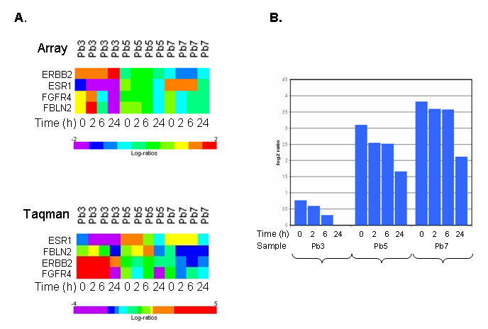 http://static-content.springer.com/image/art%3A10.1186%2F1471-2407-9-409/MediaObjects/12885_2009_Article_1743_Fig5_HTML.jpg