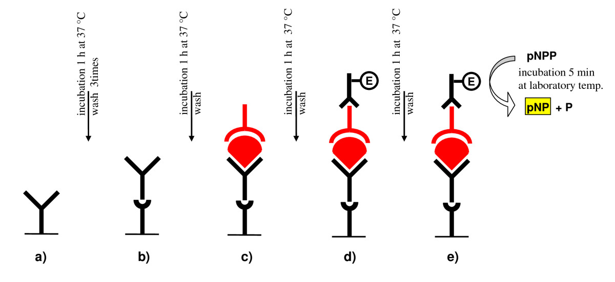 http://static-content.springer.com/image/art%3A10.1186%2F1471-244X-10-70/MediaObjects/12888_2009_Article_700_Fig1_HTML.jpg