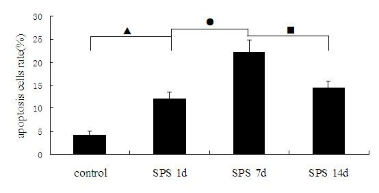 http://static-content.springer.com/image/art%3A10.1186%2F1471-244X-12-211/MediaObjects/12888_2012_1172_Fig6_HTML.jpg
