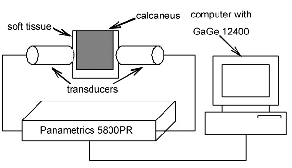 http://static-content.springer.com/image/art%3A10.1186%2F1471-2474-13-70/MediaObjects/12891_2011_1411_Fig1_HTML.jpg