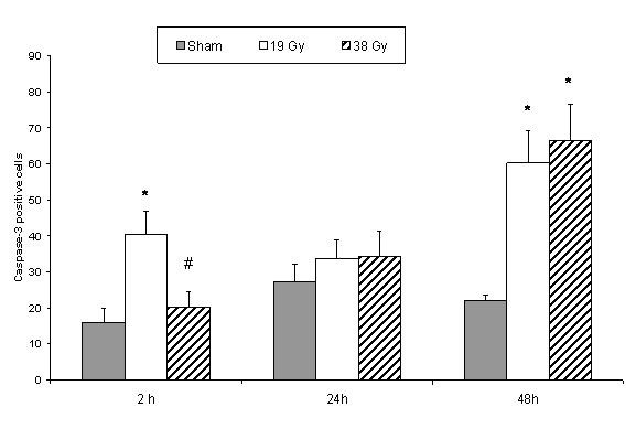 http://static-content.springer.com/image/art%3A10.1186%2F1471-2482-8-1/MediaObjects/12893_2007_Article_106_Fig3_HTML.jpg