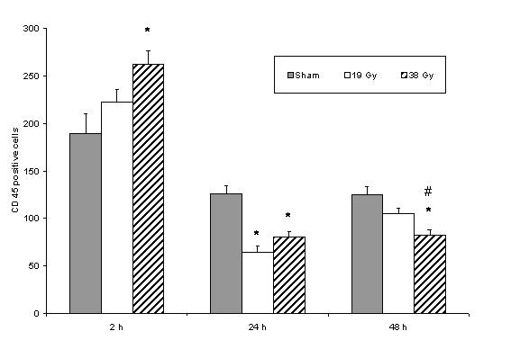 http://static-content.springer.com/image/art%3A10.1186%2F1471-2482-8-1/MediaObjects/12893_2007_Article_106_Fig4_HTML.jpg