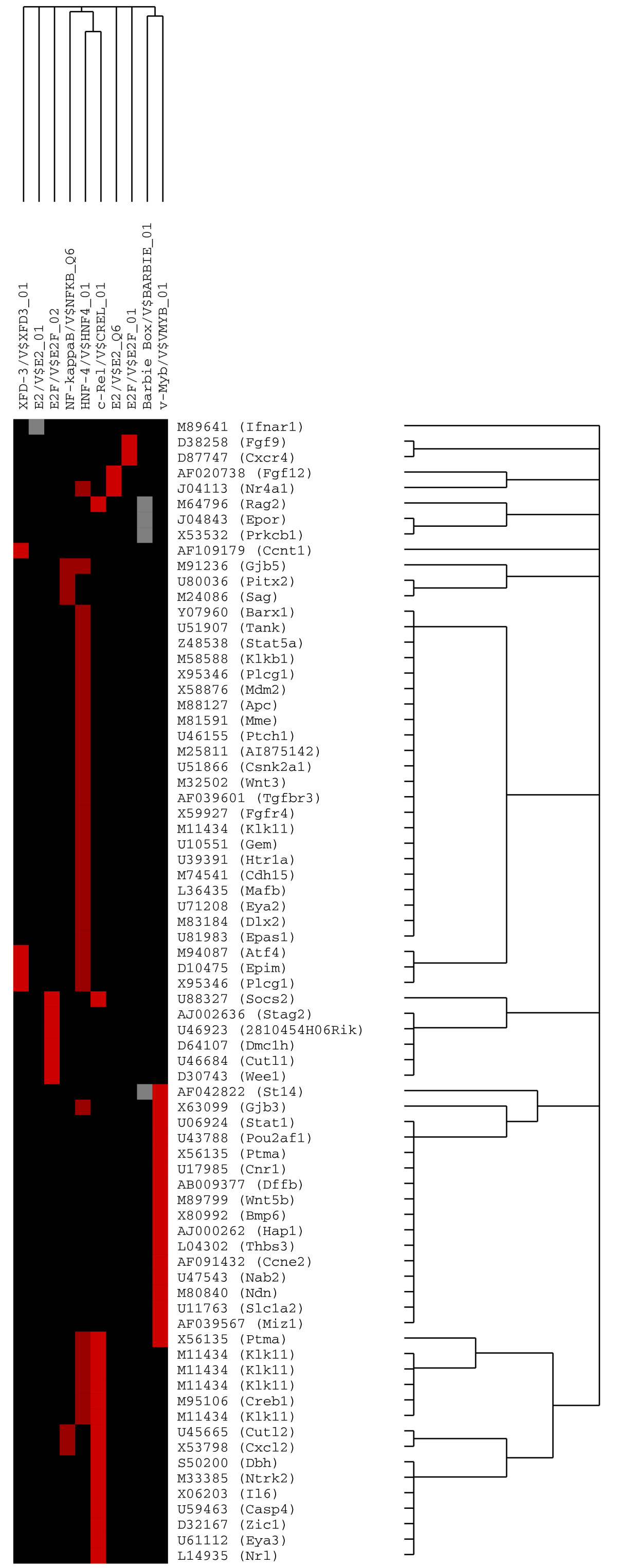 http://static-content.springer.com/image/art%3A10.1186%2F1471-2490-7-7/MediaObjects/12894_2006_Article_93_Fig5_HTML.jpg