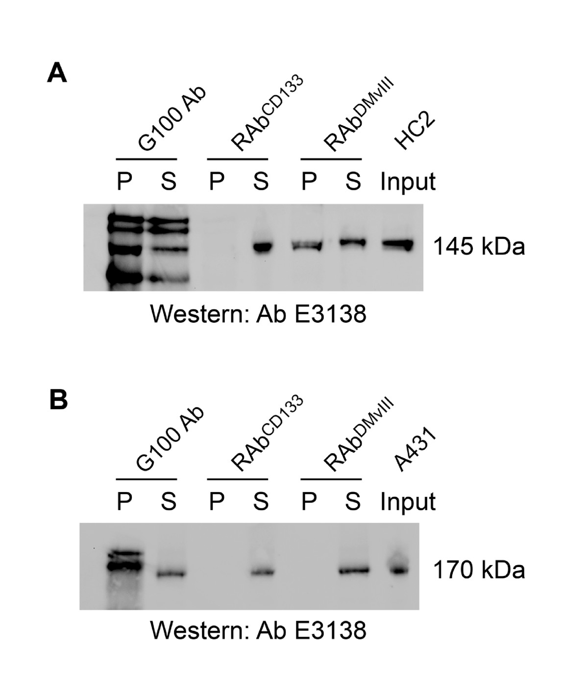 http://static-content.springer.com/image/art%3A10.1186%2F1472-6750-10-72/MediaObjects/12896_2010_Article_540_Fig4_HTML.jpg