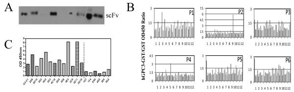 http://static-content.springer.com/image/art%3A10.1186%2F1472-6750-12-23/MediaObjects/12896_2011_716_Fig3_HTML.jpg
