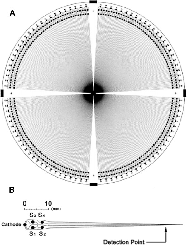 http://static-content.springer.com/image/art%3A10.1186%2F1472-6750-13-76/MediaObjects/12896_2013_857_Fig1_HTML.jpg
