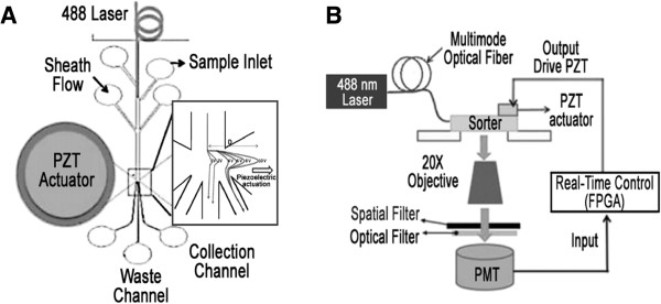 http://static-content.springer.com/image/art%3A10.1186%2F1472-6750-13-76/MediaObjects/12896_2013_857_Fig3_HTML.jpg