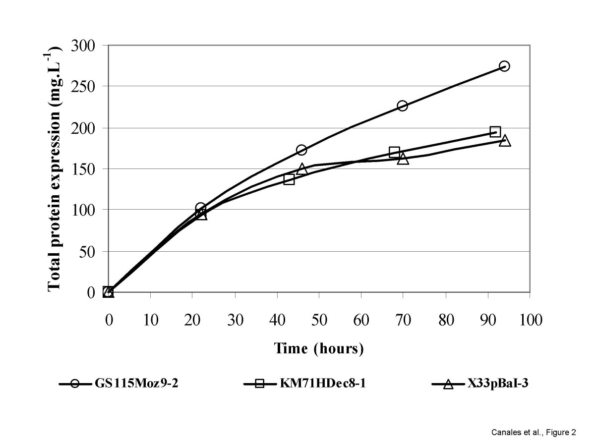 http://static-content.springer.com/image/art%3A10.1186%2F1472-6750-8-14/MediaObjects/12896_2007_Article_283_Fig2_HTML.jpg