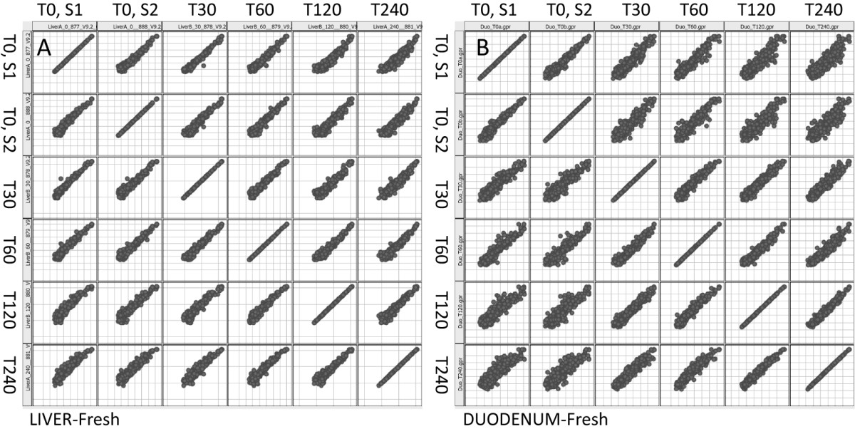 http://static-content.springer.com/image/art%3A10.1186%2F1472-6750-9-102/MediaObjects/12896_2009_Article_468_Fig5_HTML.jpg