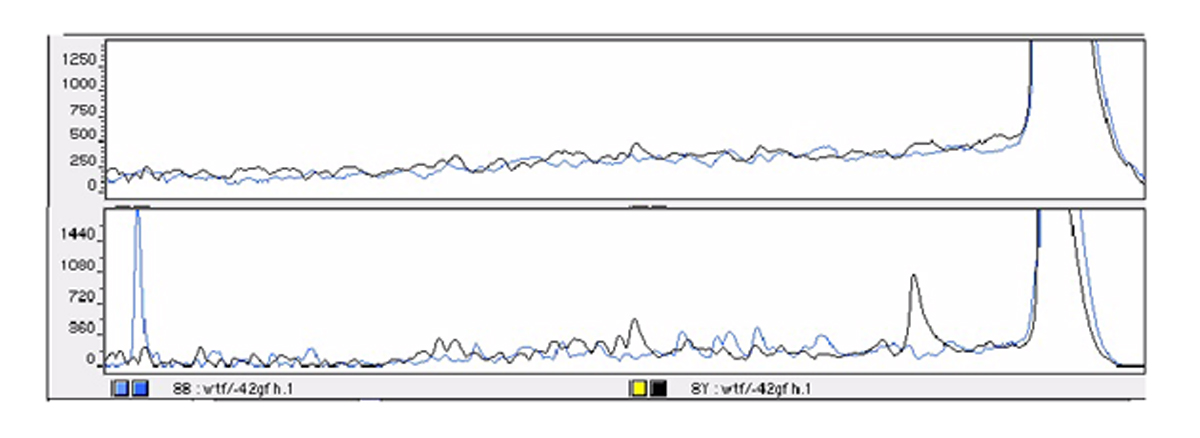 http://static-content.springer.com/image/art%3A10.1186%2F1472-6769-3-1/MediaObjects/12897_2003_Article_6_Fig4_HTML.jpg