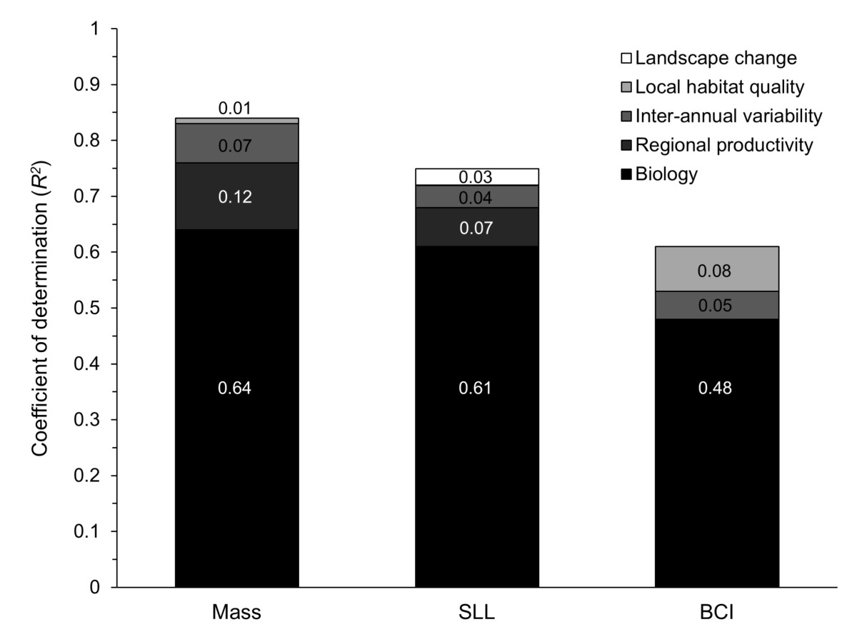 http://static-content.springer.com/image/art%3A10.1186%2F1472-6785-13-31/MediaObjects/12898_2013_Article_253_Fig3_HTML.jpg