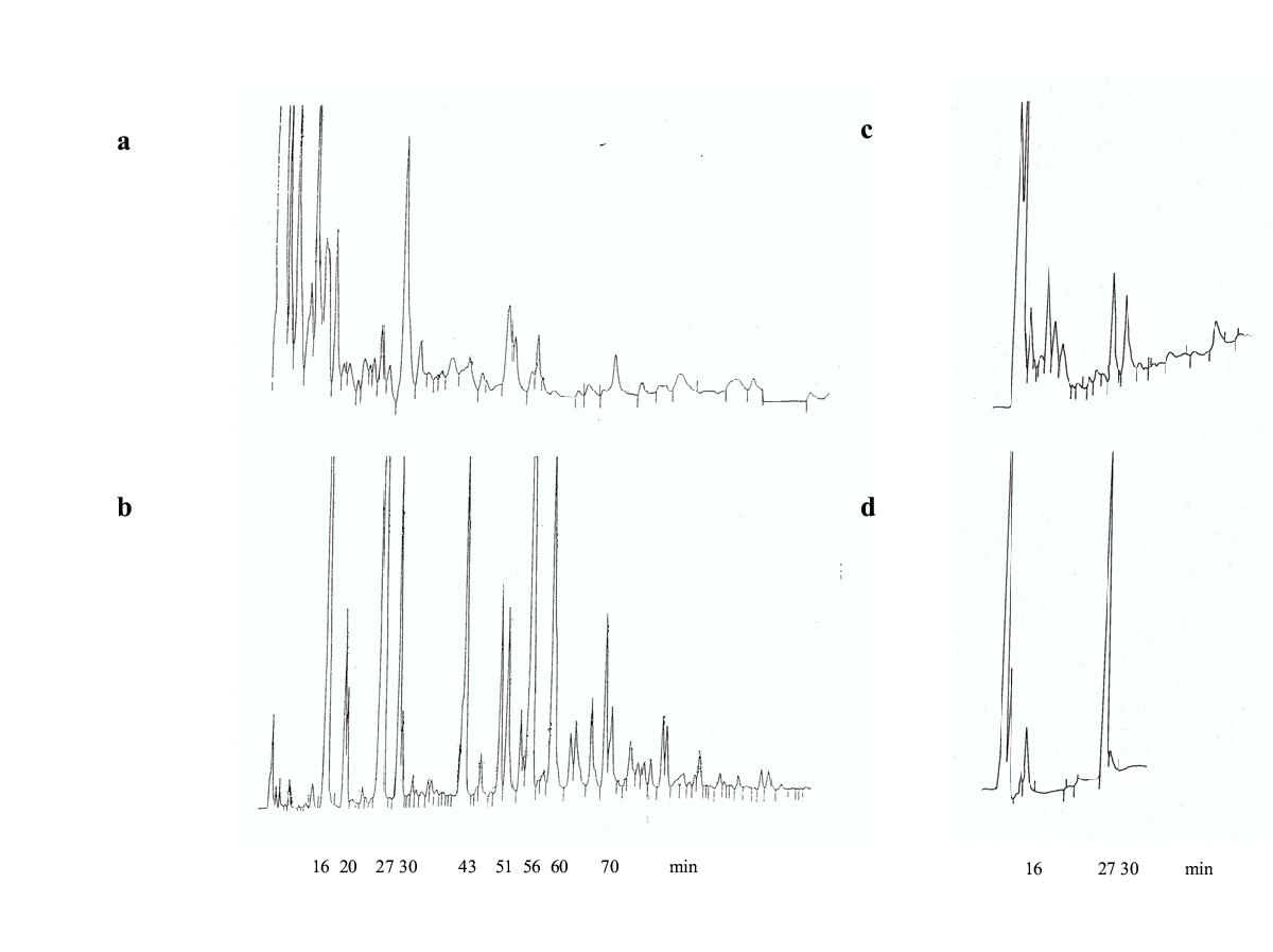 http://static-content.springer.com/image/art%3A10.1186%2F1472-6785-4-7/MediaObjects/12898_2003_Article_35_Fig2_HTML.jpg