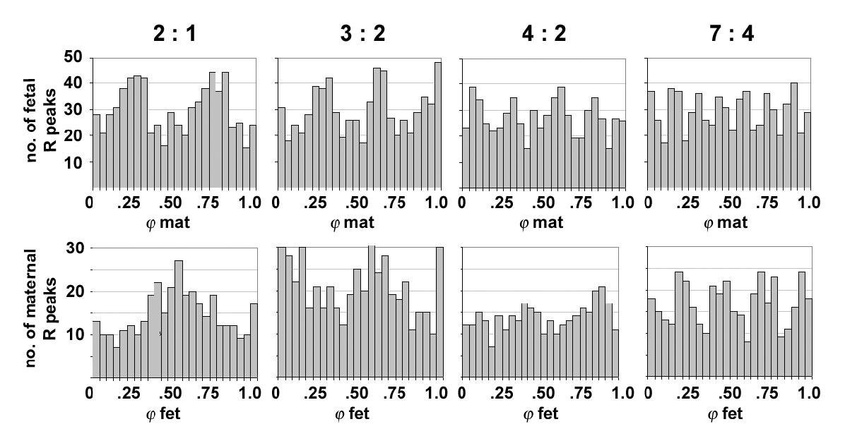 http://static-content.springer.com/image/art%3A10.1186%2F1472-6793-3-2/MediaObjects/12899_2003_Article_36_Fig1_HTML.jpg