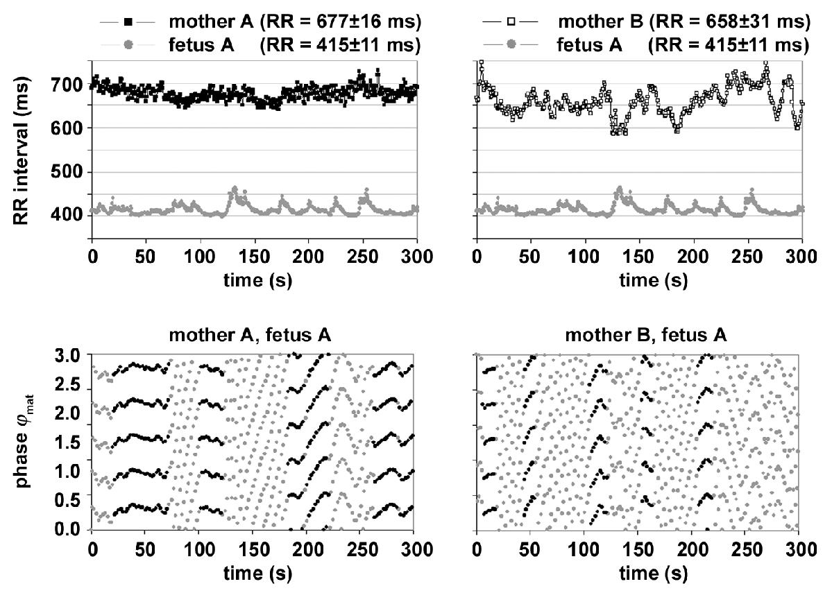 http://static-content.springer.com/image/art%3A10.1186%2F1472-6793-3-2/MediaObjects/12899_2003_Article_36_Fig6_HTML.jpg