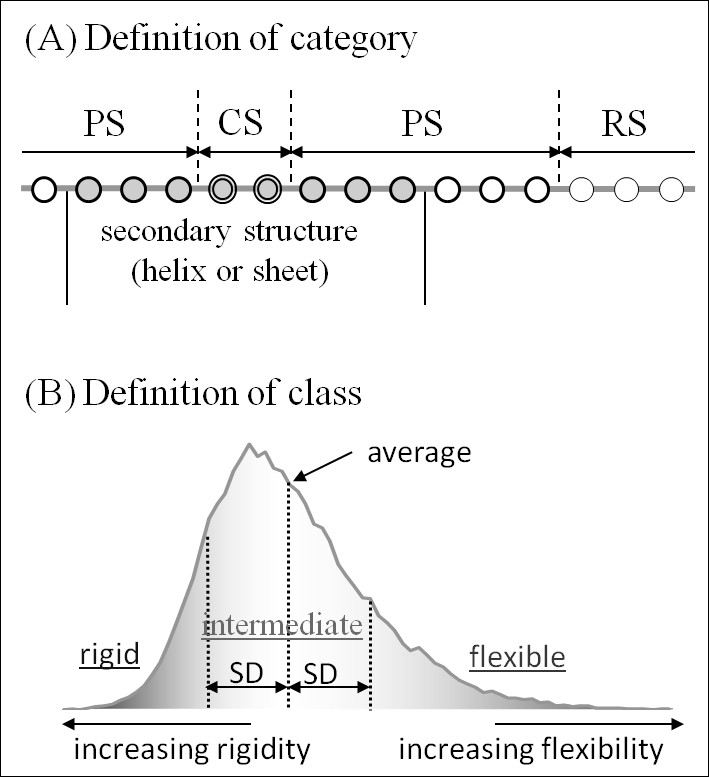http://static-content.springer.com/image/art%3A10.1186%2F1472-6807-10-20/MediaObjects/12900_2009_Article_316_Fig11_HTML.jpg