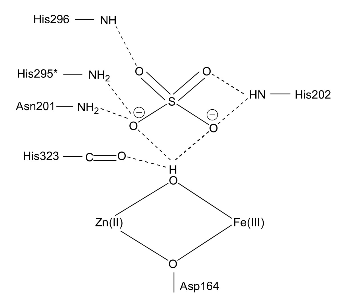 http://static-content.springer.com/image/art%3A10.1186%2F1472-6807-8-6/MediaObjects/12900_2007_Article_171_Fig3_HTML.jpg