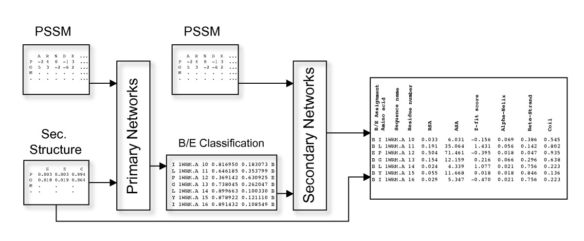 http://static-content.springer.com/image/art%3A10.1186%2F1472-6807-9-51/MediaObjects/12900_2009_Article_271_Fig1_HTML.jpg