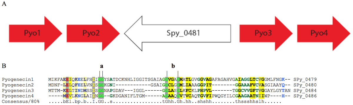 http://static-content.springer.com/image/art%3A10.1186%2F1472-6807-9-75/MediaObjects/12900_2009_Article_295_Fig3_HTML.jpg