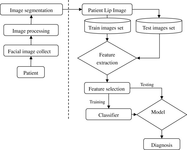 http://static-content.springer.com/image/art%3A10.1186%2F1472-6882-12-127/MediaObjects/12906_2012_1167_Fig1_HTML.jpg