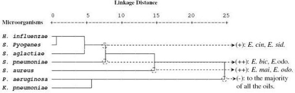 http://static-content.springer.com/image/art%3A10.1186%2F1472-6882-12-81/MediaObjects/12906_2012_1080_Fig4_HTML.jpg