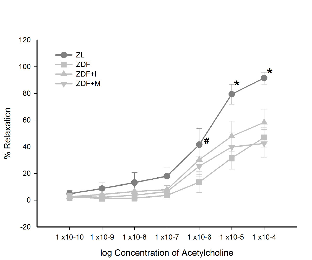 http://static-content.springer.com/image/art%3A10.1186%2F1475-2840-12-46/MediaObjects/12933_2013_Article_625_Fig4_HTML.jpg