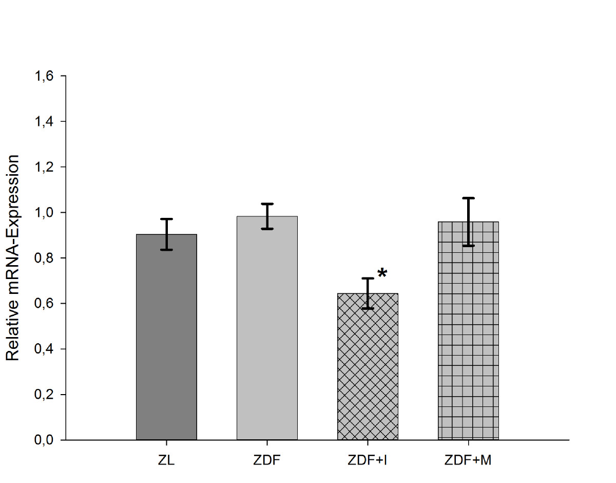 http://static-content.springer.com/image/art%3A10.1186%2F1475-2840-12-46/MediaObjects/12933_2013_Article_625_Fig7_HTML.jpg