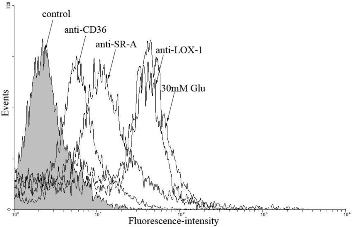 http://static-content.springer.com/image/art%3A10.1186%2F1475-2840-12-80/MediaObjects/12933_2013_Article_671_Fig4_HTML.jpg