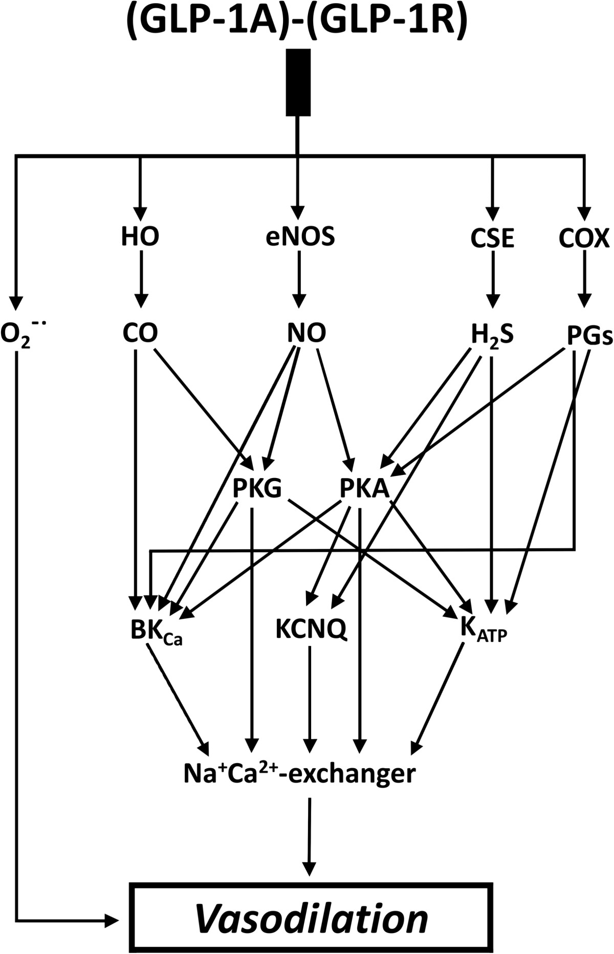 http://static-content.springer.com/image/art%3A10.1186%2F1475-2840-13-69/MediaObjects/12933_2013_Article_815_Fig7_HTML.jpg