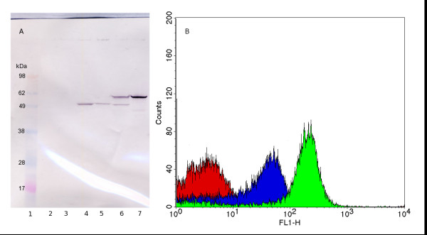 http://static-content.springer.com/image/art%3A10.1186%2F1475-2859-10-72/MediaObjects/12934_2011_587_Fig2_HTML.jpg