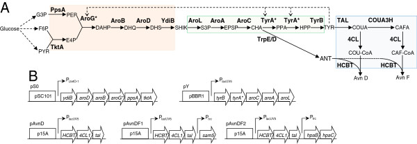 http://static-content.springer.com/image/art%3A10.1186%2F1475-2859-12-62/MediaObjects/12934_2013_858_Fig3_HTML.jpg