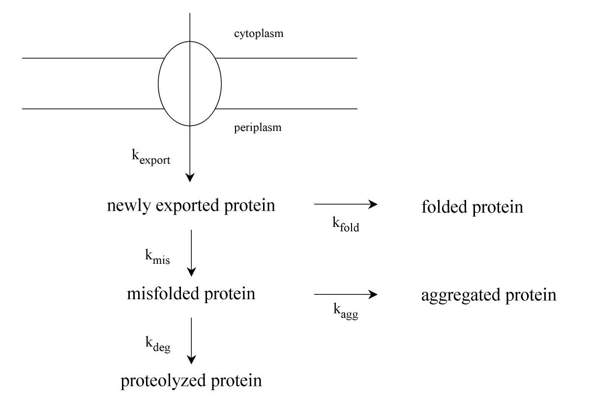 http://static-content.springer.com/image/art%3A10.1186%2F1475-2859-3-4/MediaObjects/12934_2004_Article_15_Fig4_HTML.jpg