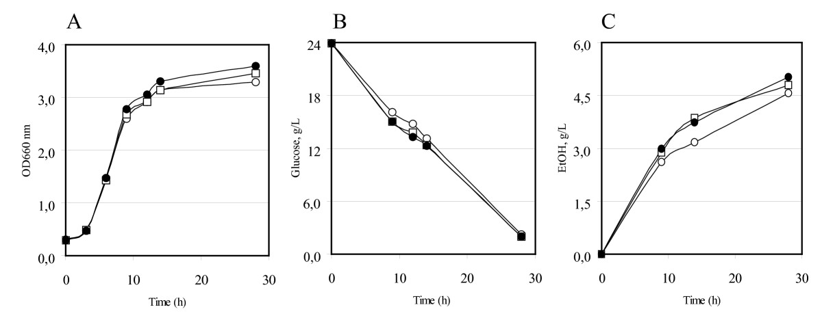 http://static-content.springer.com/image/art%3A10.1186%2F1475-2859-9-15/MediaObjects/12934_2009_Article_405_Fig2_HTML.jpg