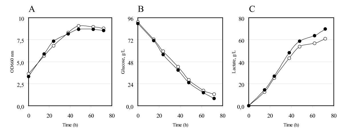 http://static-content.springer.com/image/art%3A10.1186%2F1475-2859-9-15/MediaObjects/12934_2009_Article_405_Fig4_HTML.jpg