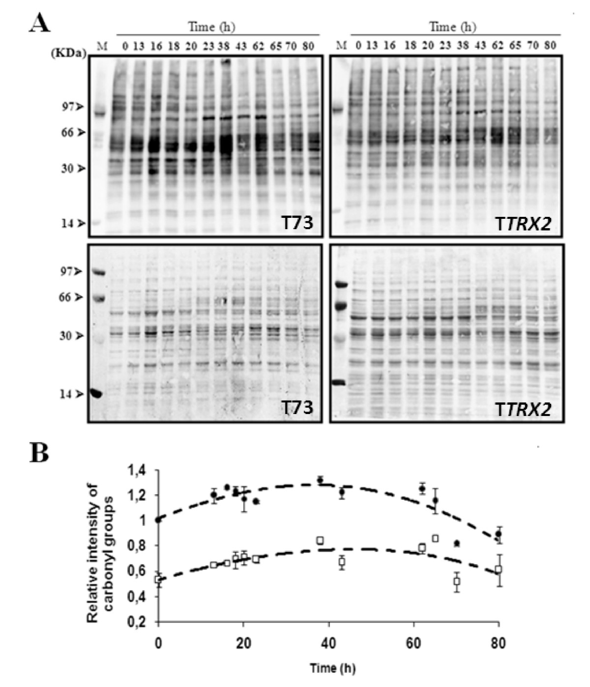 http://static-content.springer.com/image/art%3A10.1186%2F1475-2859-9-9/MediaObjects/12934_2009_Article_399_Fig7_HTML.jpg