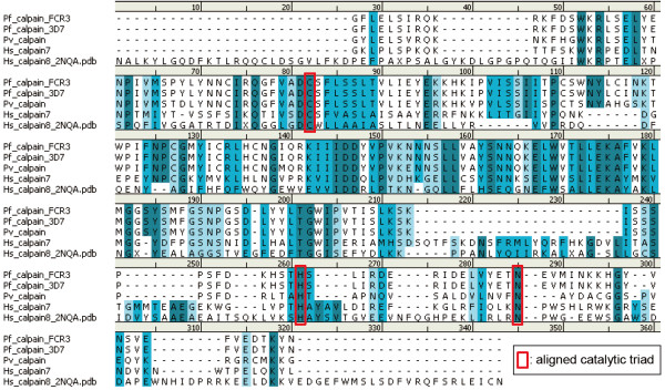 http://static-content.springer.com/image/art%3A10.1186%2F1475-2875-12-47/MediaObjects/12936_2012_2661_Fig3_HTML.jpg
