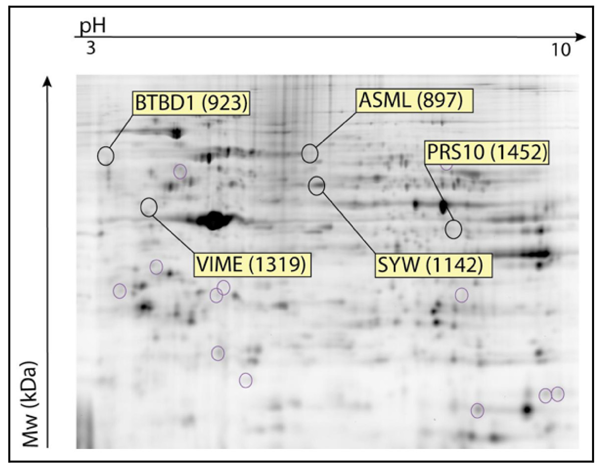 http://static-content.springer.com/image/art%3A10.1186%2F1476-069X-7-52/MediaObjects/12940_2008_Article_190_Fig10_HTML.jpg