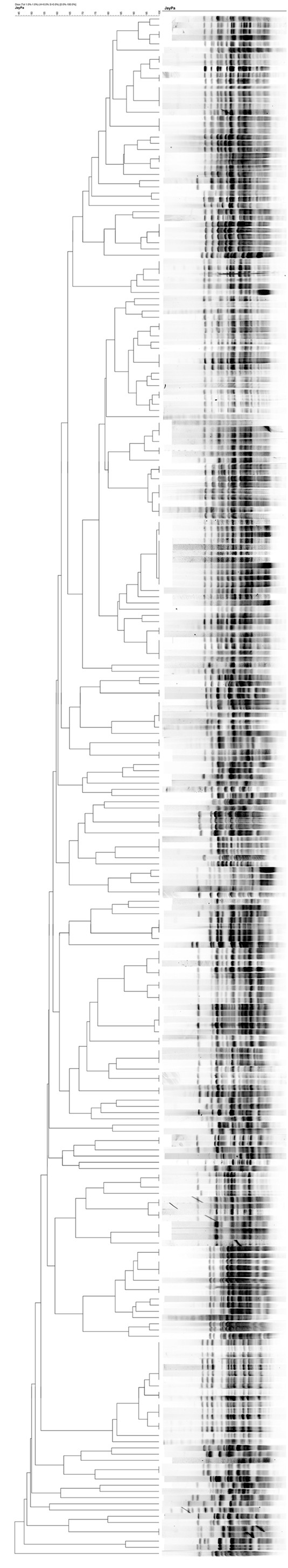 http://static-content.springer.com/image/art%3A10.1186%2F1476-0711-11-25/MediaObjects/12941_2012_Article_265_Fig1_HTML.jpg