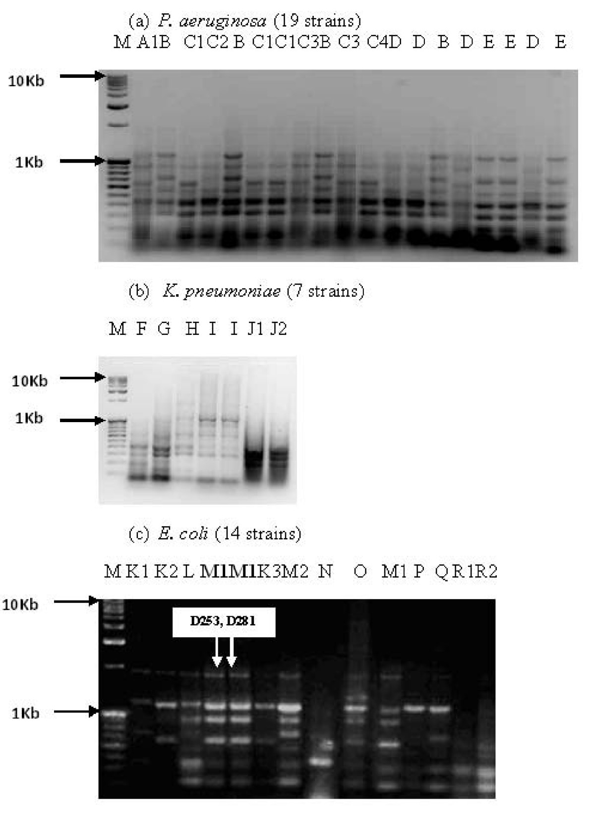http://static-content.springer.com/image/art%3A10.1186%2F1476-0711-9-2/MediaObjects/12941_2009_Article_174_Fig2_HTML.jpg