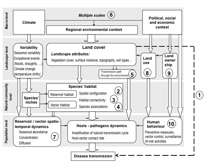 http://static-content.springer.com/image/art%3A10.1186%2F1476-072X-9-54/MediaObjects/12942_2010_Article_387_Fig2_HTML.jpg