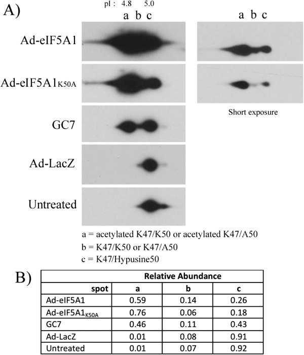 http://static-content.springer.com/image/art%3A10.1186%2F1476-4598-12-35/MediaObjects/12943_2013_Article_1106_Fig2_HTML.jpg