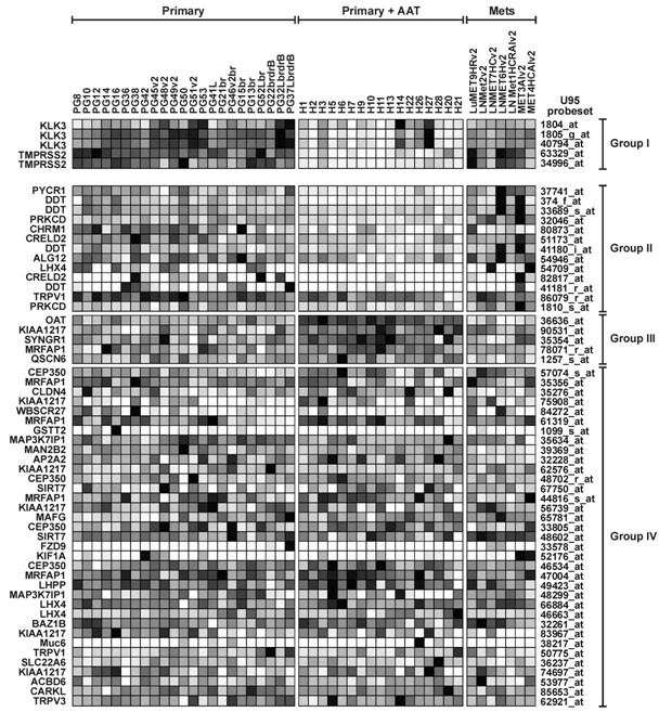 http://static-content.springer.com/image/art%3A10.1186%2F1476-4598-6-39/MediaObjects/12943_2007_Article_247_Fig5_HTML.jpg