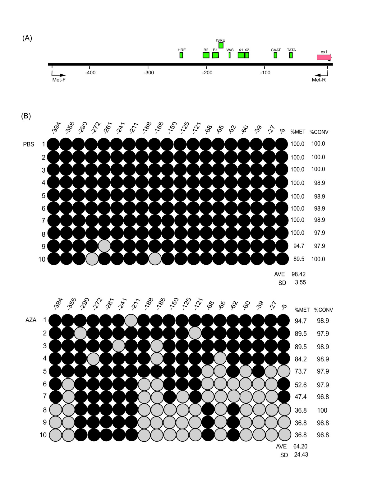 http://static-content.springer.com/image/art%3A10.1186%2F1476-4598-7-43/MediaObjects/12943_2008_Article_334_Fig2_HTML.jpg