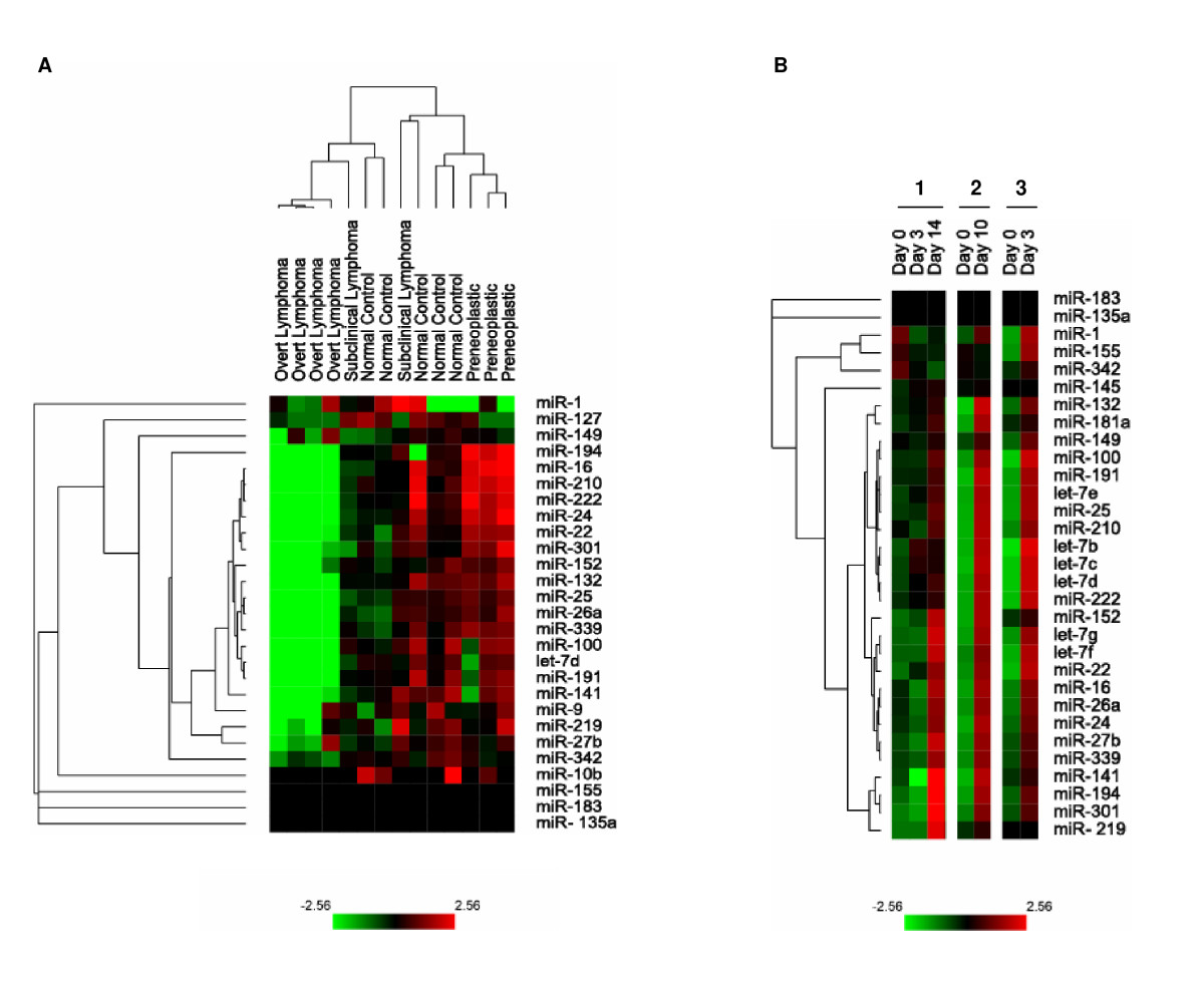 http://static-content.springer.com/image/art%3A10.1186%2F1476-4598-7-74/MediaObjects/12943_2008_Article_365_Fig3_HTML.jpg