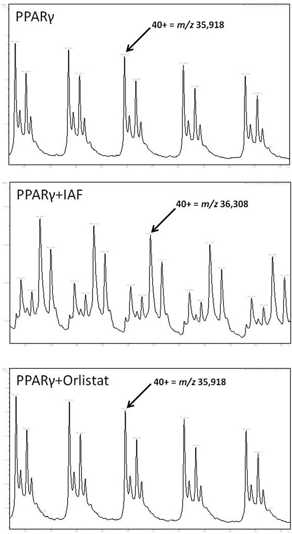 http://static-content.springer.com/image/art%3A10.1186%2F1476-511X-12-48/MediaObjects/12944_2013_Article_897_Fig3_HTML.jpg