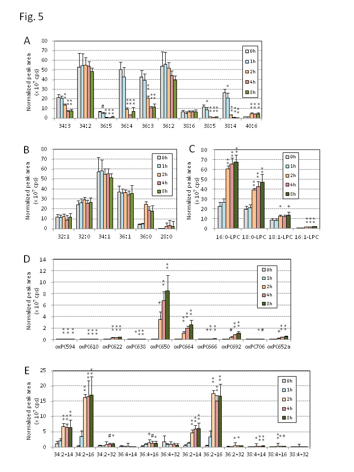 http://static-content.springer.com/image/art%3A10.1186%2F1476-511X-13-48/MediaObjects/12944_2014_Article_1198_Fig5_HTML.jpg
