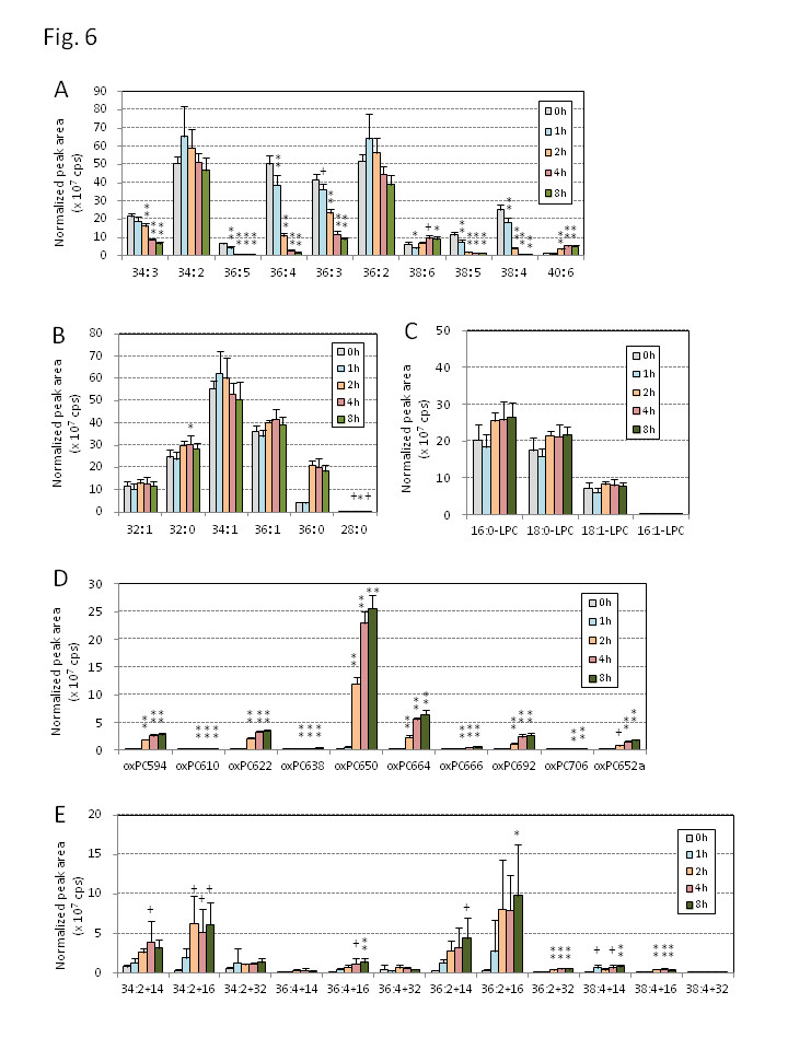 http://static-content.springer.com/image/art%3A10.1186%2F1476-511X-13-48/MediaObjects/12944_2014_Article_1198_Fig6_HTML.jpg