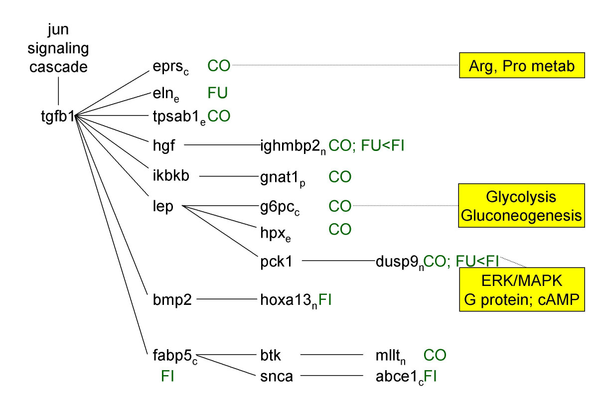 http://static-content.springer.com/image/art%3A10.1186%2F1476-511X-5-10/MediaObjects/12944_2006_Article_84_Fig4_HTML.jpg
